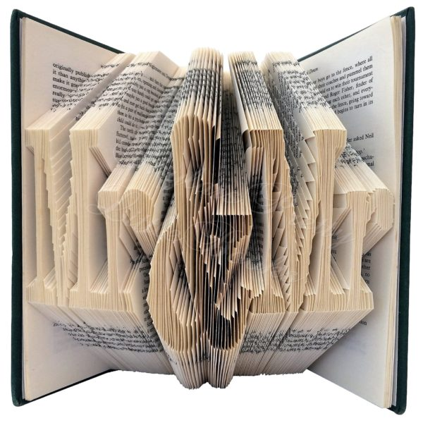 Mr & Mr Celebration Folded Book Art - Version 1